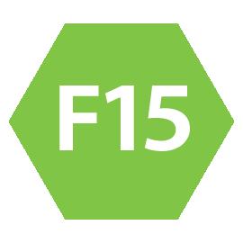 icona F15 avanzato