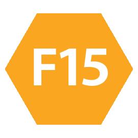 icona F15 intermedio