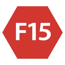icona F15 principiante